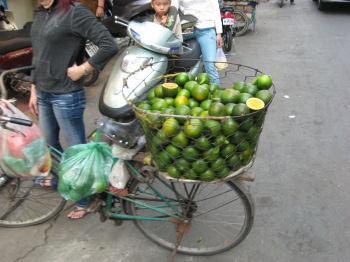柑橘類を売っていた