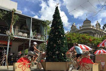 Christmas Tree go round