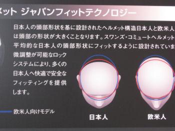 日本人の頭の形