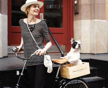 Bowery Lane Bicycles, bowerylanebicycles.com