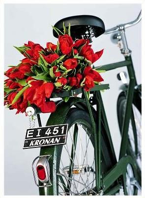 ミリタリーバイクの伝統のナンバープレート