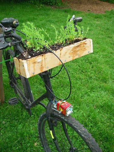 庭つき自転車