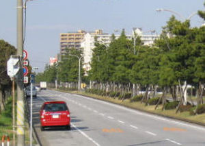 路肩が広い例。赤いクルマの止まっている部分すべて路肩。ただ、そのままでは違法駐車されてしまうことも多い。