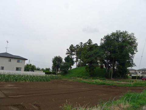 P1400884