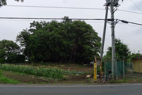 P1400833