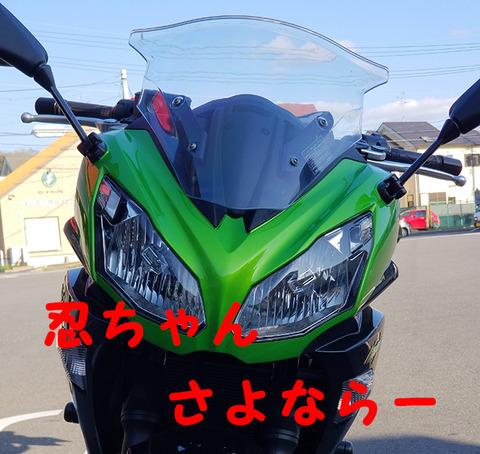 20200410_忍ちゃんさよなら