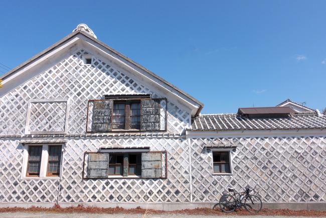 南伊豆河津桜-020