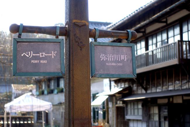 南伊豆河津桜-002