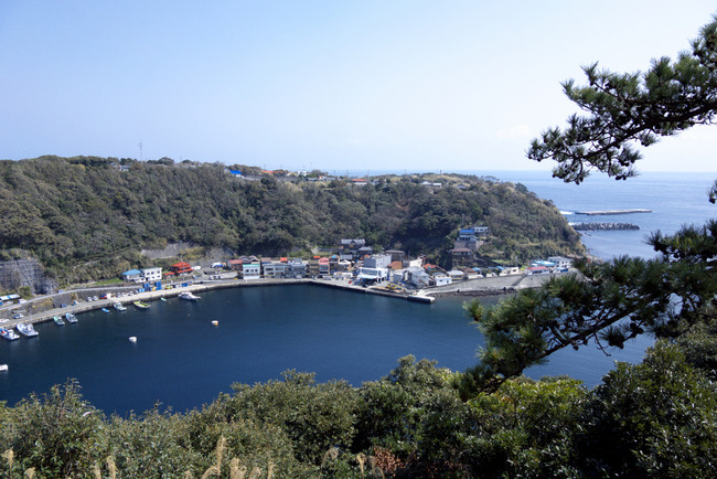 伊豆大島-031