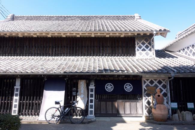 南伊豆河津桜-019