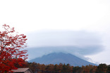 山中湖紅葉まつり-002
