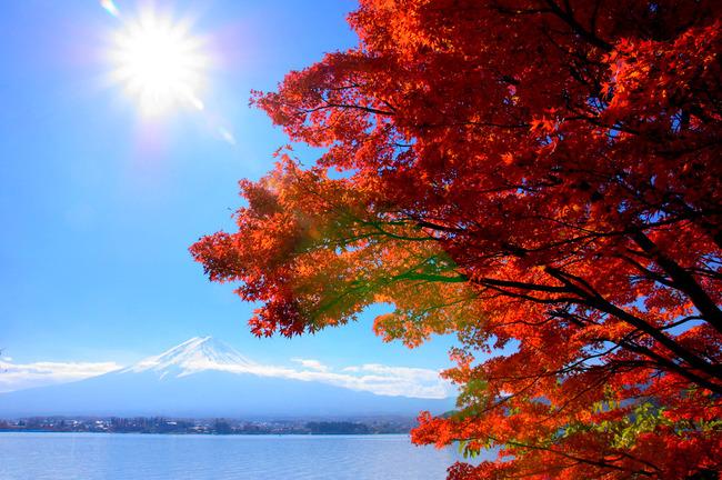 紅葉&富士山-010