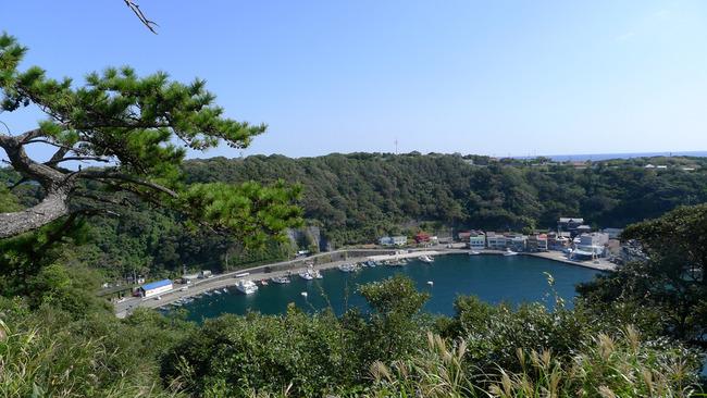 伊豆大島-024