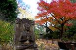 鎌倉紅葉-002