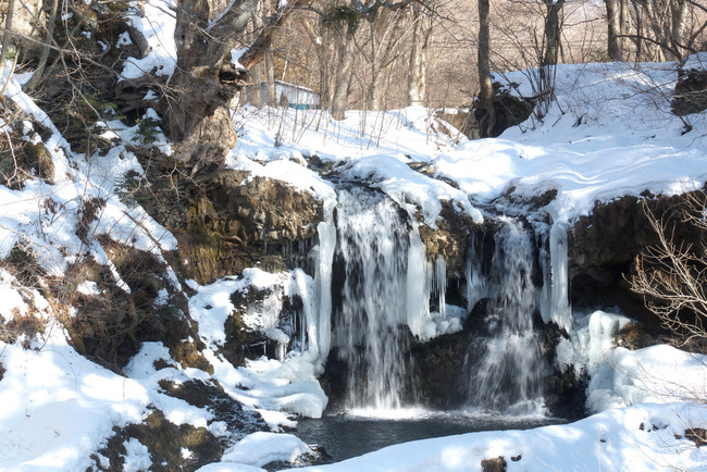 山中湖冬景色-008