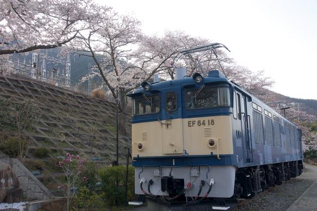 フルーツ&ピーチライン★ポタリング-003