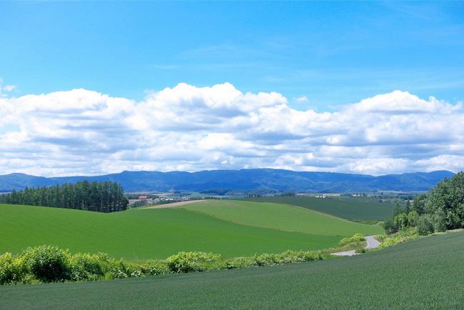 美瑛の丘-017