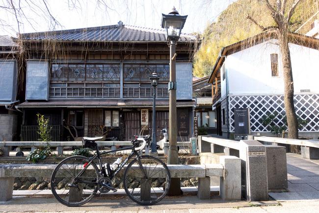 南伊豆河津桜-003