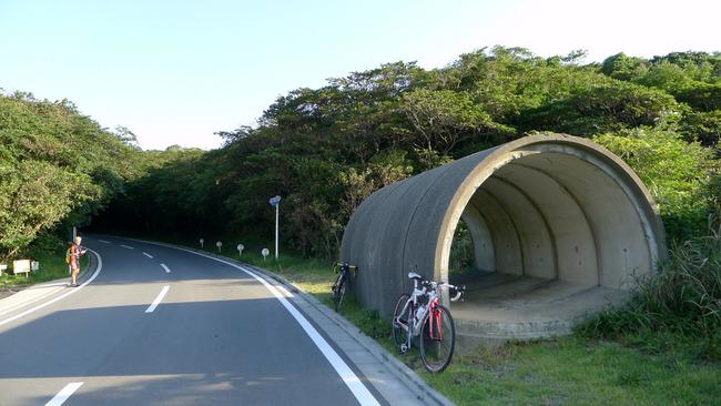 伊豆大島-008
