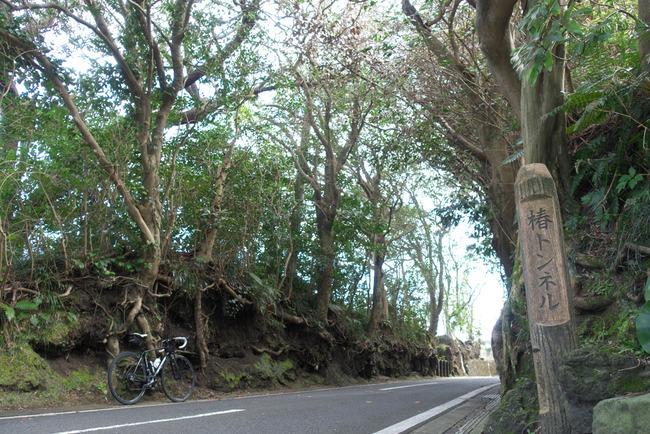 伊豆大島-006
