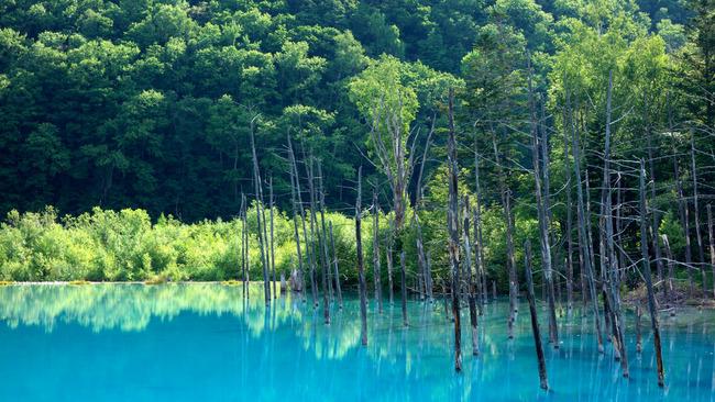 青い池-003