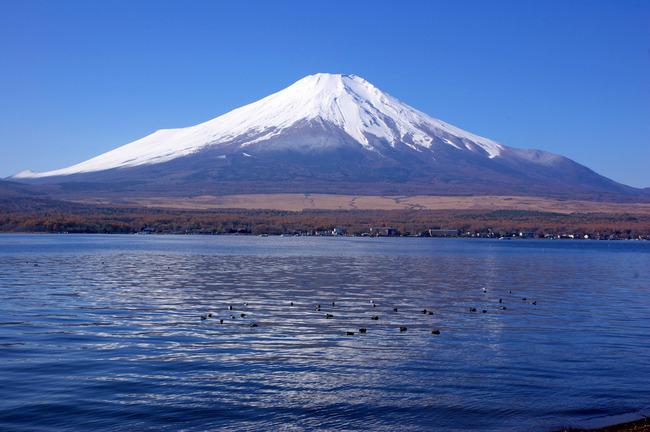 紅葉&富士山-003