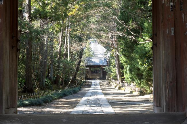 鎌倉旬景-005