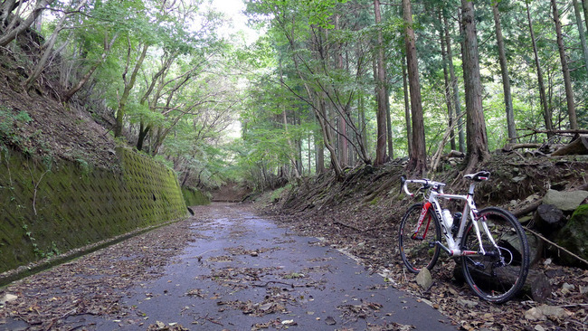 表丹沢林道