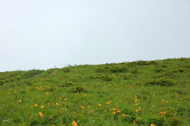 八ヶ岳高原-019