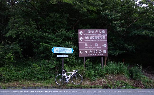 八ヶ岳高原-014