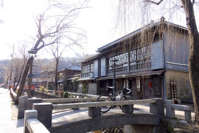 南伊豆河津桜-005