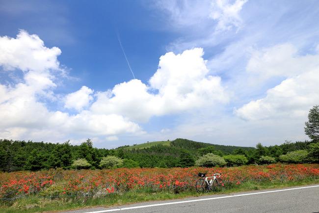 美ヶ原高原・VL-011