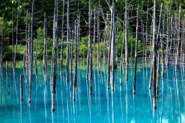 青い池-005