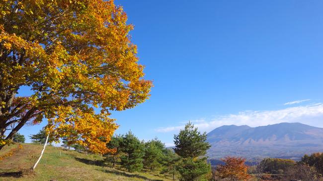 高峰高原-036