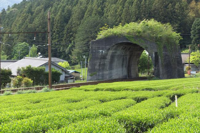 大井川-020