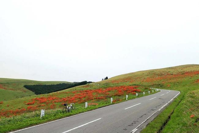 美ヶ原高原・VL-027