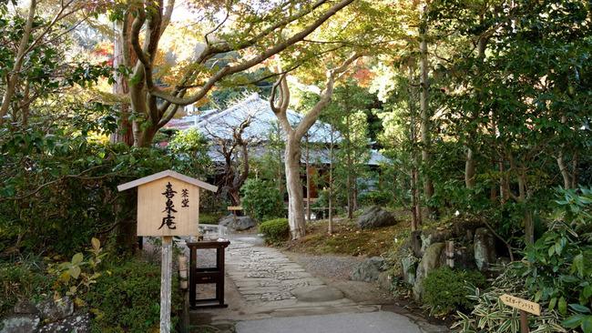 鎌倉紅葉-006
