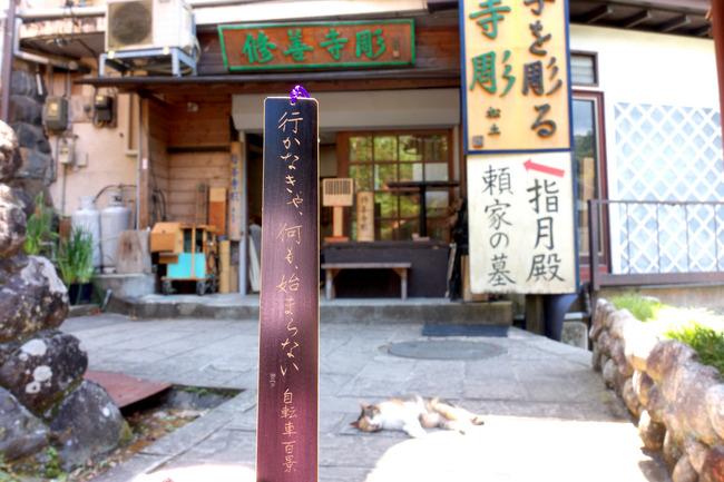 西伊豆スカイライン-014