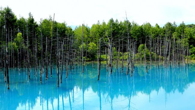 青い池-004