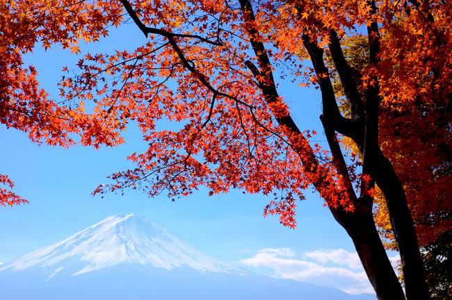 紅葉&富士山-007