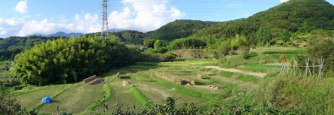 名古木の棚田