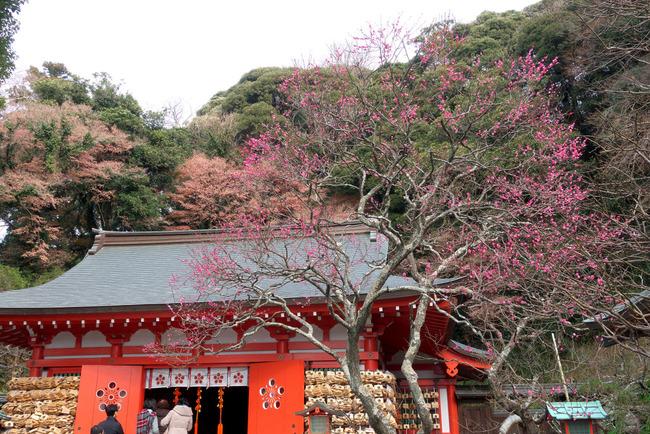 鎌倉冬景色-002