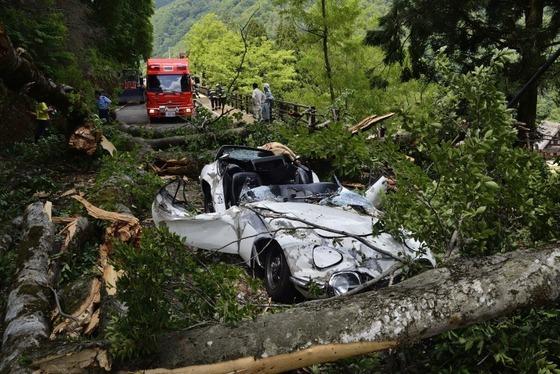トヨタ2000GTが倒木で大破しレストアの続報待ちだったあの一件、訴訟では「半額」で県と和解へ