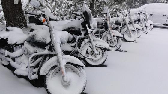 harley-davidson-motorcycles-snow-1