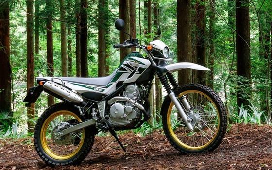 免許ないけどセロー250ってバイク乗りたいのだが素人でも扱える?