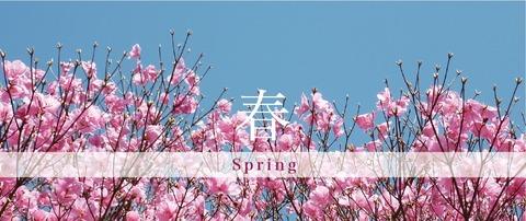 header-spring