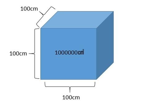 WS000261