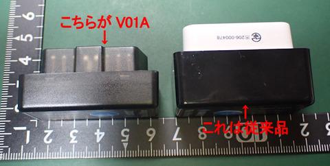 P1050651B