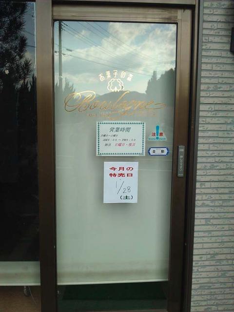 WP_000096