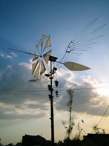 風魅鳥 -kazamidori-